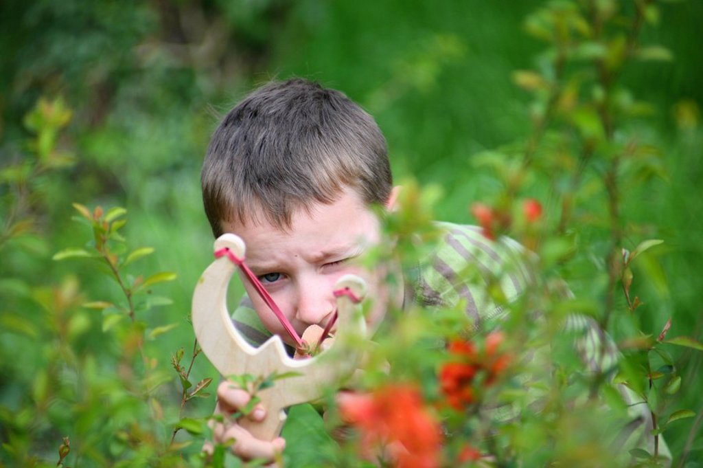 boy with slingshot in garden, aiming : Stock Photo