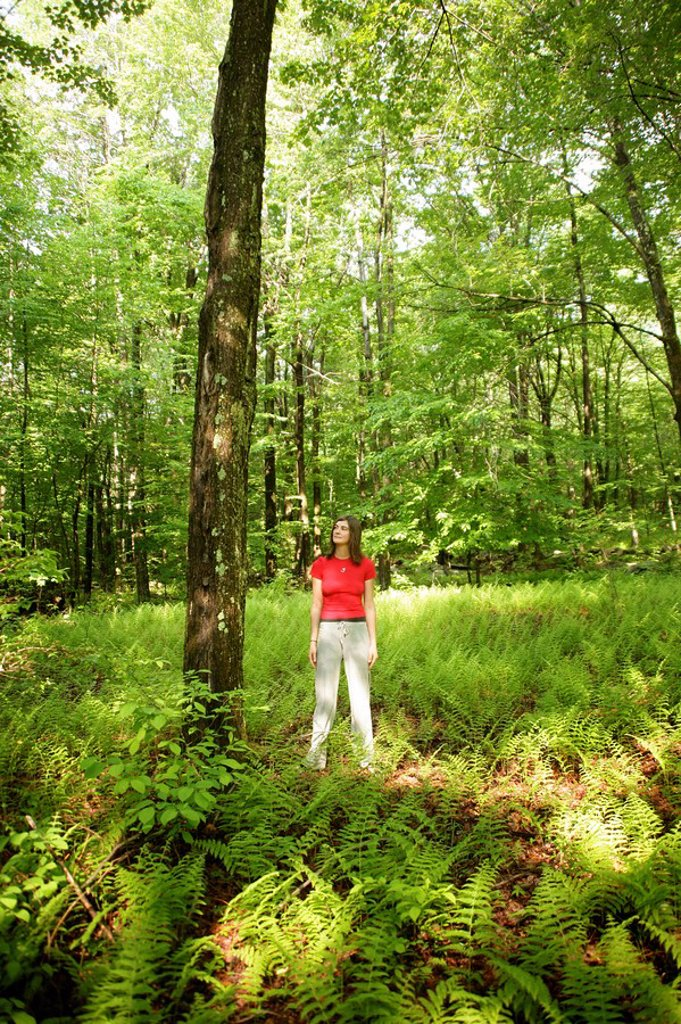 Stock Photo: 1841-32013 Woman standing in a forest