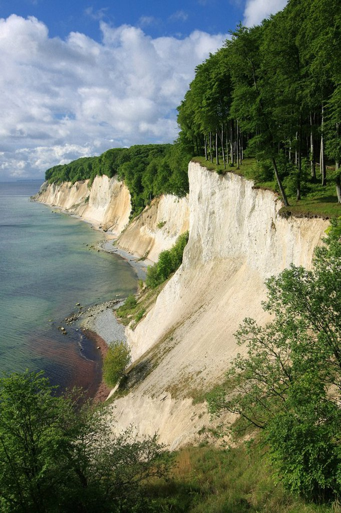 The chalk cliff of Jasmund, Rugia, Germany, elevated view : Stock Photo