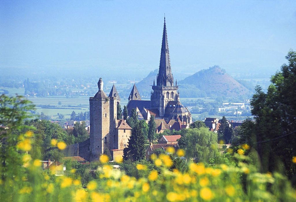 Stock Photo: 1841-41529 Close_up of flowers blooming with cathedral in background, Saone_et_Loire, France
