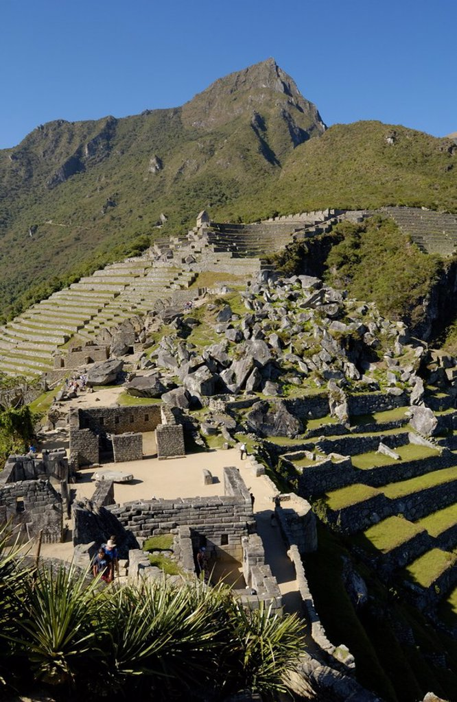 Stock Photo: 1841-43731 High angle view of old ruins on mountain, Inca Ruins, Machu Picchu, Cusco Region, Peru