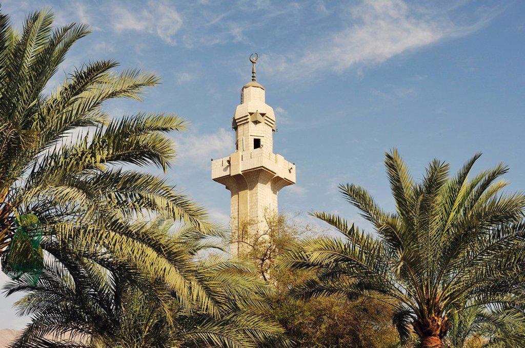 Minaret and palms, Akaba, Jordan, Asia : Stock Photo