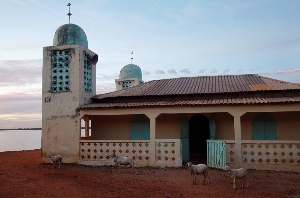 Mosque, Gambia, West Africa, Africa : Stock Photo