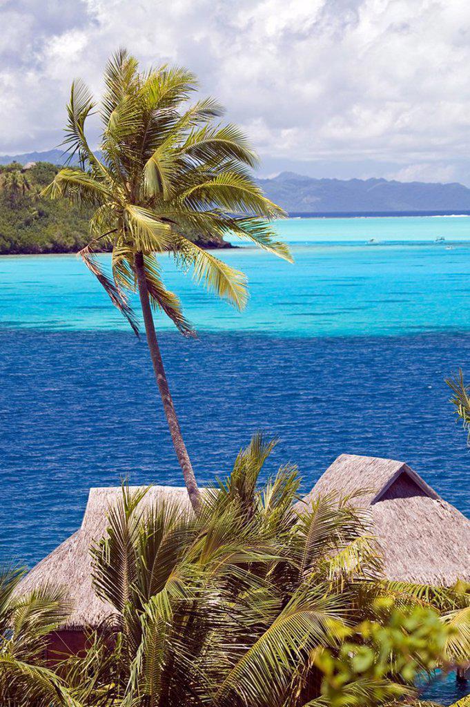 Stock Photo: 1841-5621 Bora Bora French Polynesia