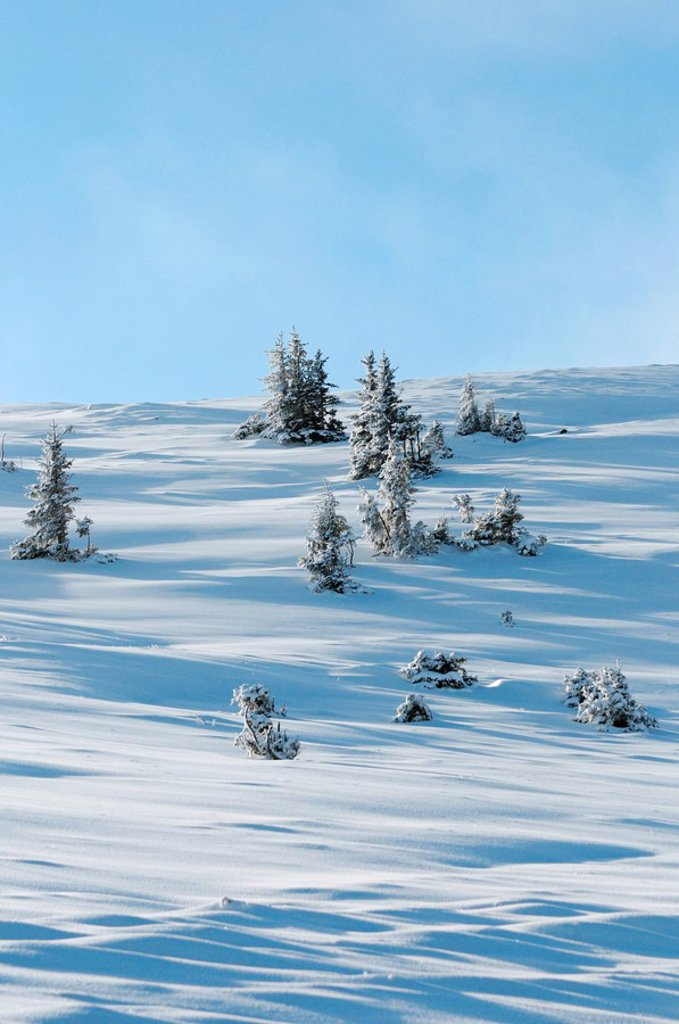 Stock Photo: 1841-56339 Winter landscape, Styria, Austria