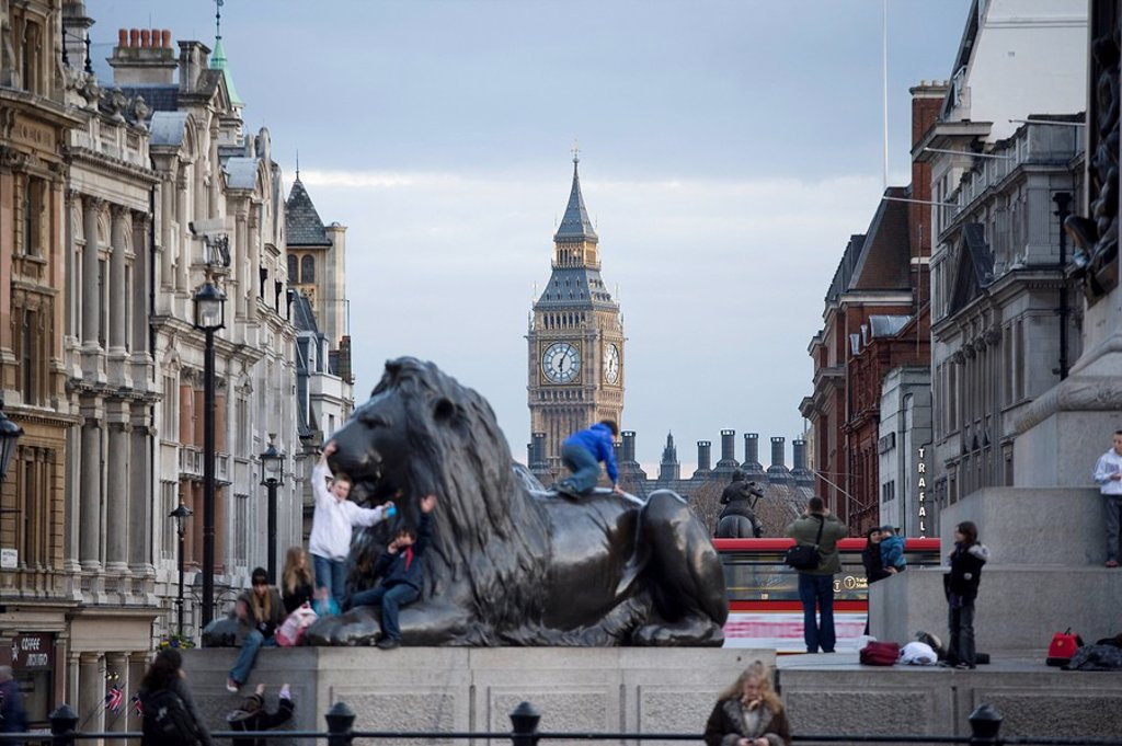 Lion statue with clock tower in background, Big Ben, Houses Of Parliament, City Of Westminster, London, England : Stock Photo