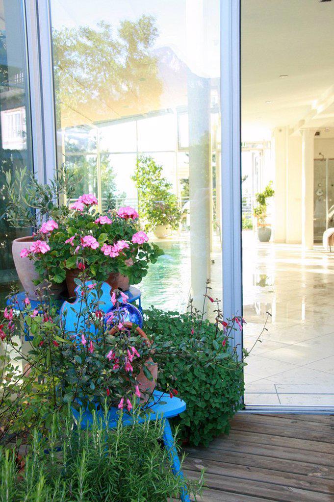 Stock Photo: 1841-57839 Potted plants in verandah
