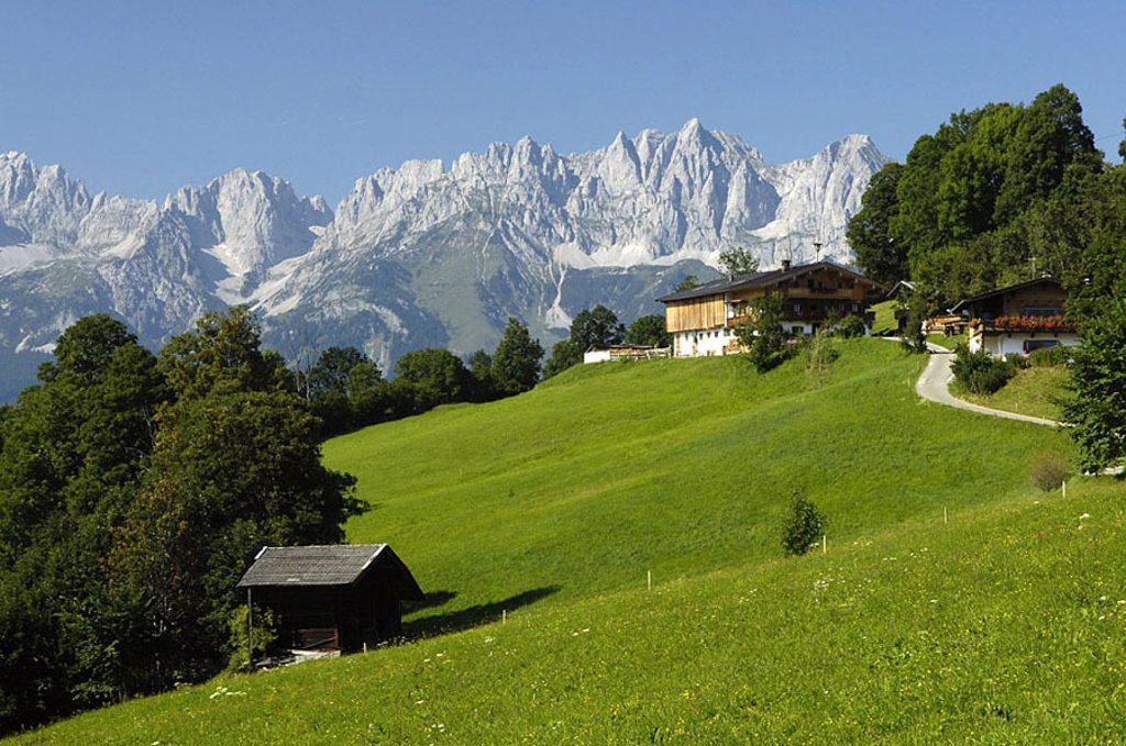 Farmhouse with mountain range in background, Alps, Tyrol, Austria : Stock Photo