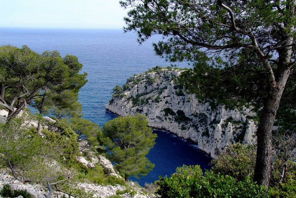 View to bay, Calanque de Port_Pin, France : Stock Photo