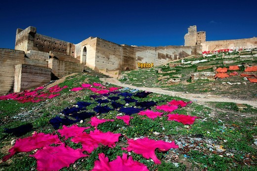 Animal skins lying to dry at the city wall outside of Fes, Morocco : Stock Photo