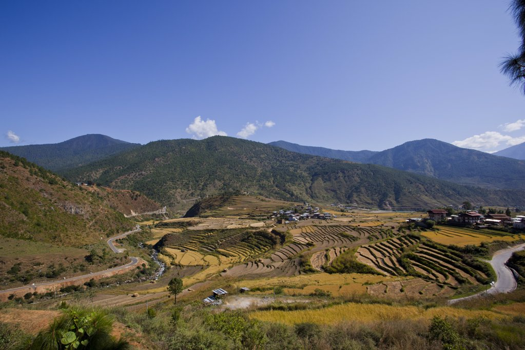 Stock Photo: 1841R-113793 Landscape in the Phobjika Valley, Bhutan