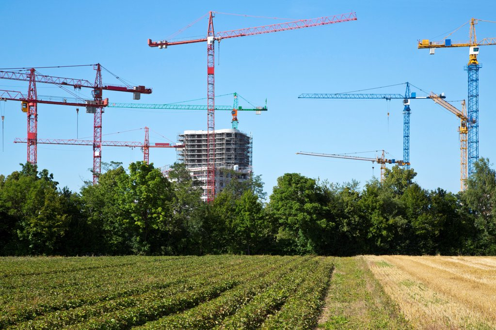 Stock Photo: 1841R-124905 Cranes on a construction site near a field