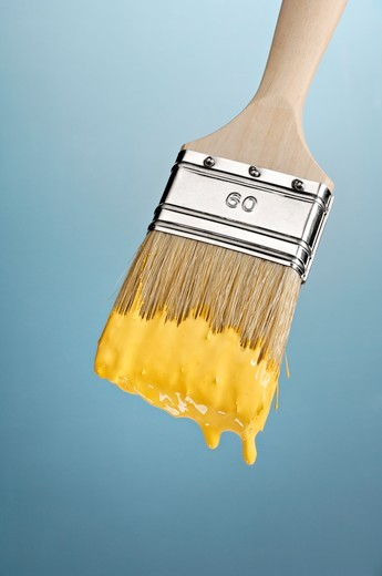 Close-up of paint brush : Stock Photo