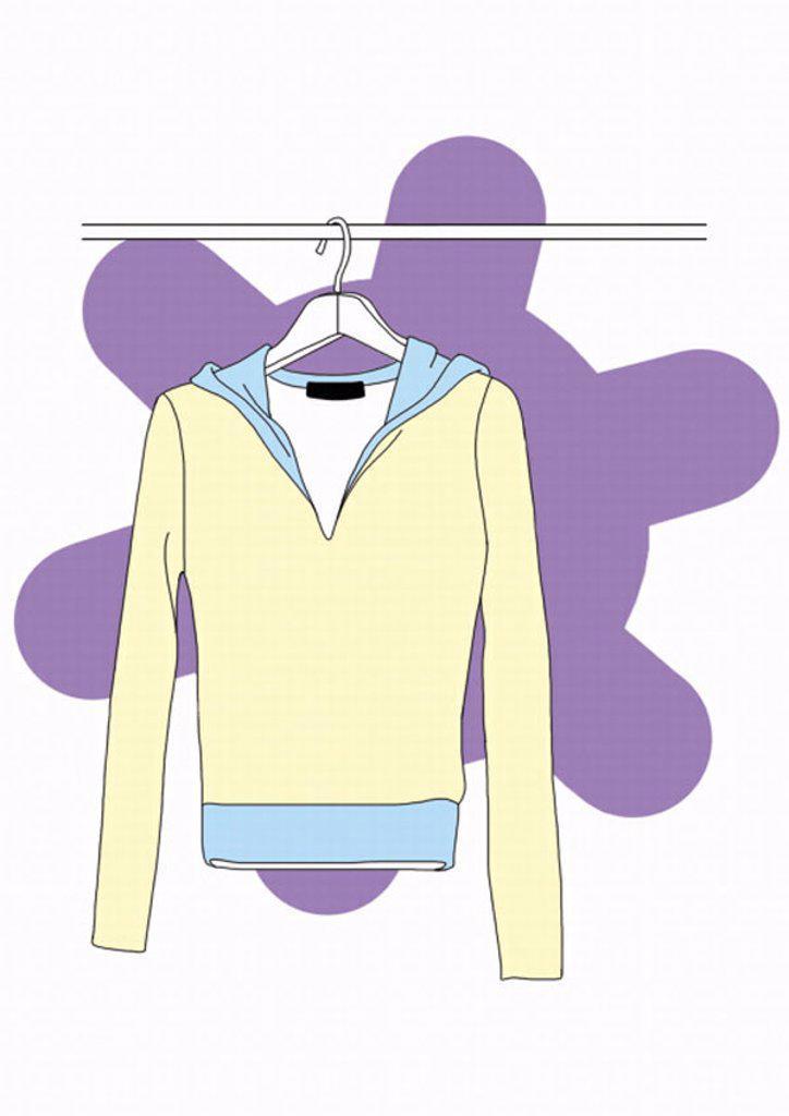 Stock Photo: 1843R-1827 Long sleeved shirt on a hanger