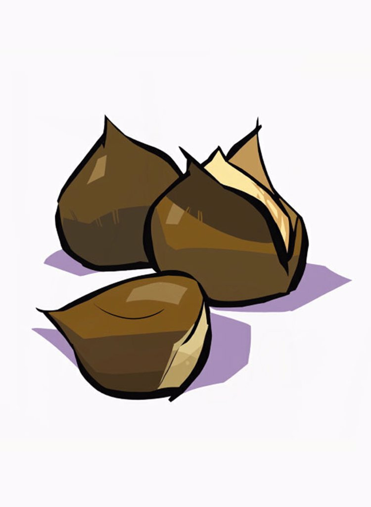 Three whole chestnuts : Stock Photo