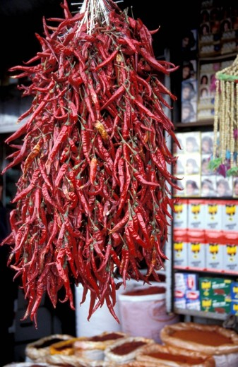 Dried red peppers hanging at the market , Istanbul, Turkey, Middle East , : Stock Photo