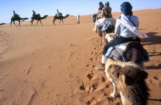 Tourists trekking through the desert, Erg Chebbi, near Merzouga , Sahara Desert, Morocco, Africa : Stock Photo
