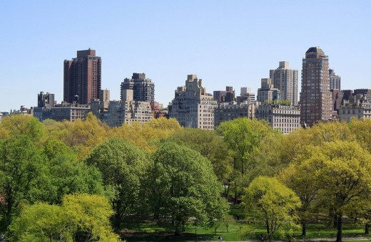 Central Park, New York City, United States, North America : Stock Photo