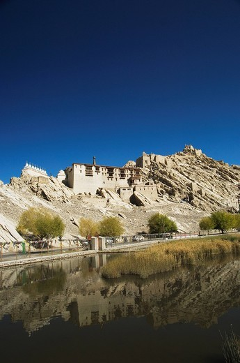 Lake in front of a palace, Shey Palace, Shey, Ladakh, Jammu and Kashmir, India : Stock Photo