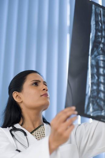 Female doctor examining an x_ray report, Gurgaon, Haryana, India : Stock Photo