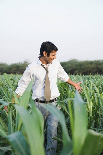 Stock Photo: 1846-8983 Businessman walking in a farm and smiling