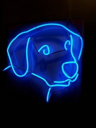 Blue neon dog : Stock Photo