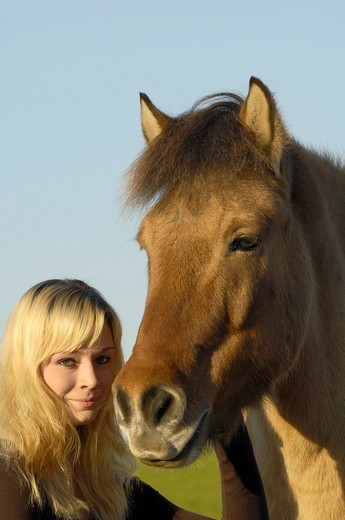 Teen and her Icelandic horse in the evening light : Stock Photo