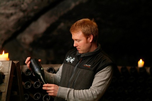 Cellarer conducting quality control in an old vault cellar, checking the fermentation process of champagne, Kessler sparkling winery, Esslingen, Baden_Wuerttemberg, Germany, Europe : Stock Photo