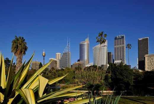 Sydney Tower or Centrepoint Tower, skyline of the Central Business District, Deutsche Bank, Royal Botanical Gardens, The Domain, Sydney, New South Wales, Australia : Stock Photo