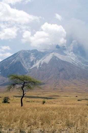 Stock Photo: 1848-108928 Eruption of Ol Doinyo Lengai volcano in 2007, Tanzania, Africa