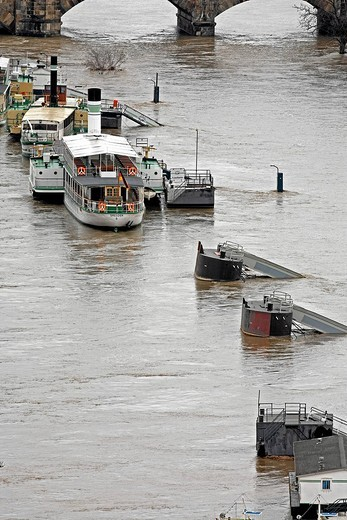 Flooding in Dresden, Saxony, Germany : Stock Photo