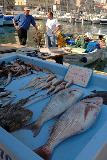 Stock Photo: 1848-109725 Daily fish market at Vieux Port, the old harbour, Marseilles, Provence_Alpes_Cote d´Azur, France