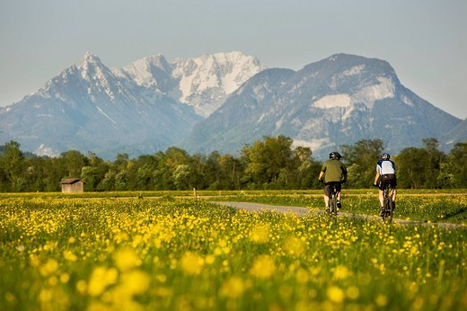Cyclist in spring, view of Wilder Kaiser Range, near Kramsach, North Tyrol, Austria, Europe : Stock Photo
