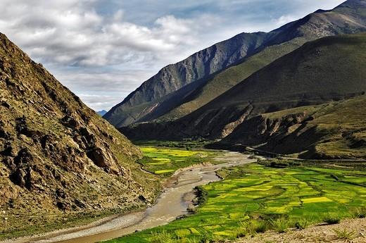 River, fertile valley, Tibet : Stock Photo