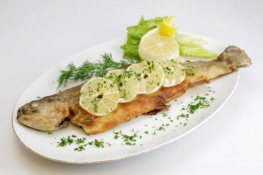 Stock Photo: 1848-116616 Baked Trout with lemon