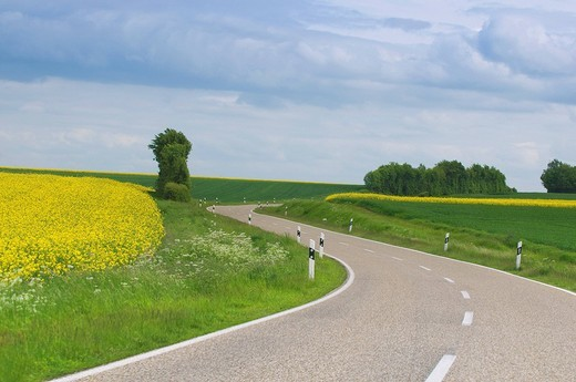 View of winding road in the Eifel region, Rhineland_Palatinate, Germany, Europe : Stock Photo