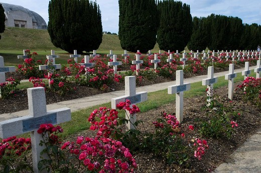 War graves, Camp de Batallie, Douaumont, Verdun, Lorraine, Lorraine, France, Europe : Stock Photo