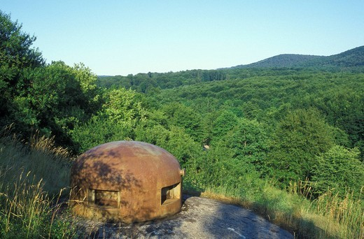 Bunkers of the Ligne Maginot, Maginot Line bunker, defensive line, Lembach, Alsace, France, Europe : Stock Photo