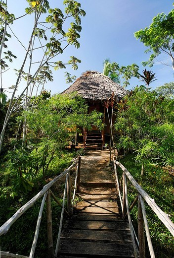 Stock Photo: 1848-118254 Bungalow with a thatched roof in the tropical forest, flimsy wooden bridge, Punta Gorda, Belize, Central America, Caribbean