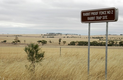 Stock Photo: 1848-120771 Rabbit Proof Fence, the longest fence in the world against rabbit plague, sign, Western Australia, Australia