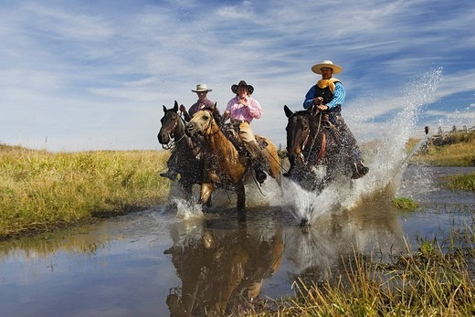 Stock Photo: 1848-125709 Cowgirl and cowboys riding in water, Oregon, USA