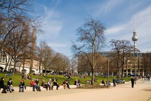 Spring in Berlin, Monbijoupark, Garnisonkirchplatz, in the background the TV tower, Berlin, Germany, Europe : Stock Photo