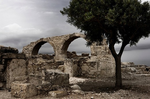 Stock Photo: 1848-127866 Single tree among the ruins of an ancient building at Roman Agora, archaeological site of Kourion near Limassol, Cyprus, Europe