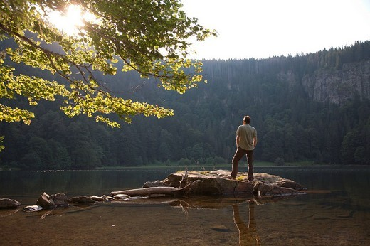 Man, mid 40s, standing on a rock at the Feldsee lake in the Black Forest, Baden_Wuerttemberg, Germany, Europe : Stock Photo