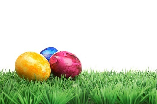 Coloured Easter eggs on grass : Stock Photo