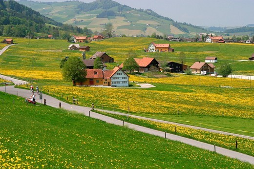 Scenery of a typical settlement with scattered buildings. This type of settlement is usually found in prealpine settings, as seen here in Appenzell Switzerland. : Stock Photo