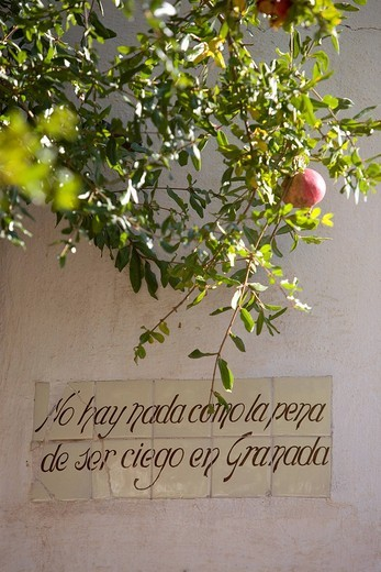 Stock Photo: 1848-137780 Saying inscribed onto tiles: There´s nothing worse than being blind in Granada, Granada, Andalusia, Spain, Europe