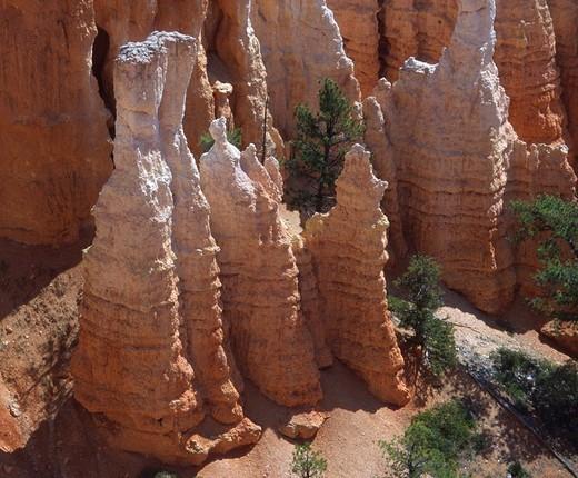 Stock Photo: 1848-139295 Hoodoos in Bryce Canyon, USA, Utha