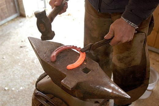 Anvil and horseshoe : Stock Photo