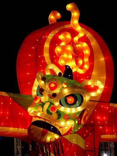 Illuminated Dragon at chinese New Year, Singapore, Asia : Stock Photo